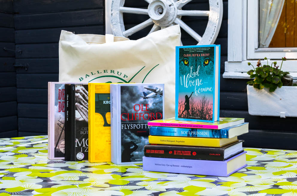 My holiday bag: A bag filled with books, that my local library made me for my holiday.