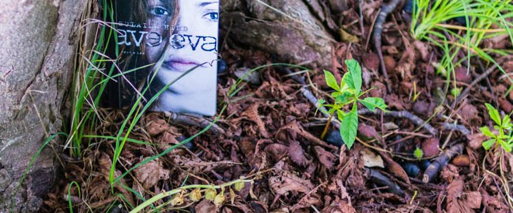 The book Ave Eva is placed a the bottom of a tree trunk in a pile of dead autumn leaves