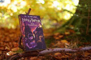 På en gren tæt ved skovbunden står første bog i Harry Potter-serien; Harry Potter and the Philosopher's Stone.