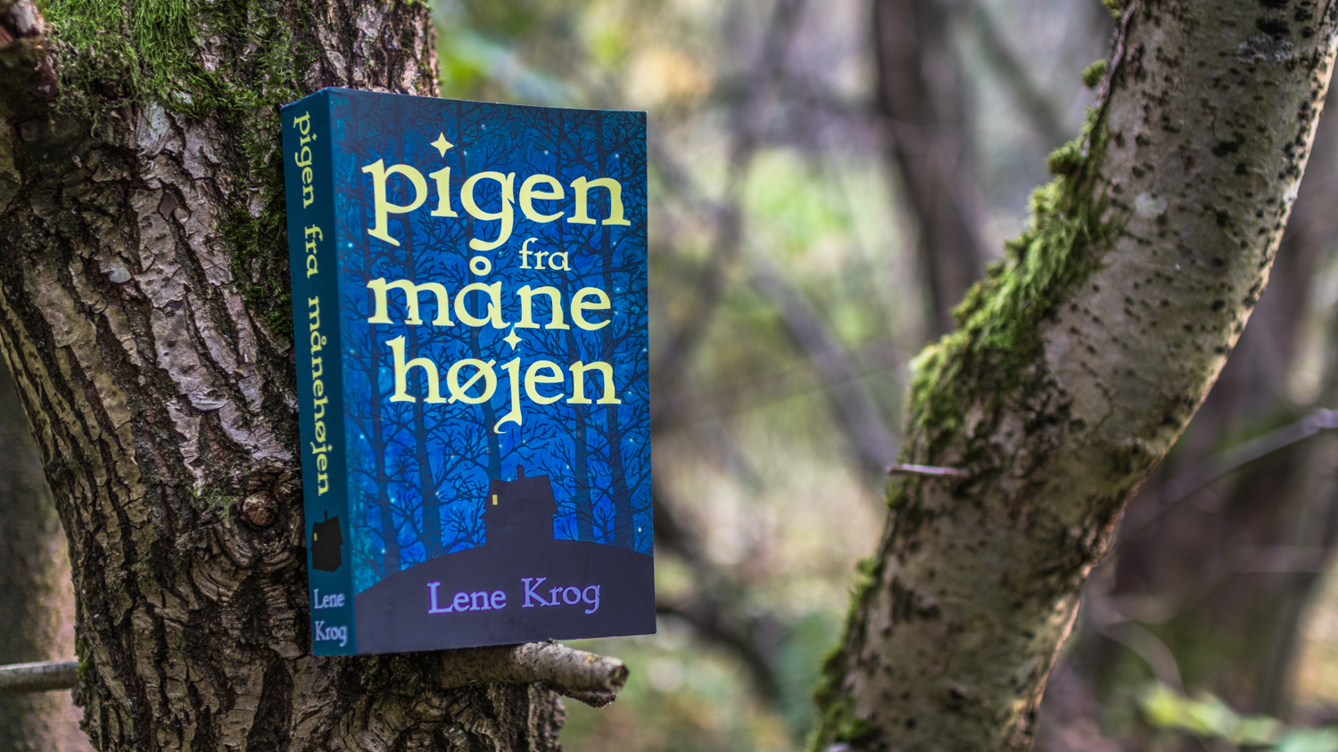 The book Pigen fra Månehøjen on a tree branch