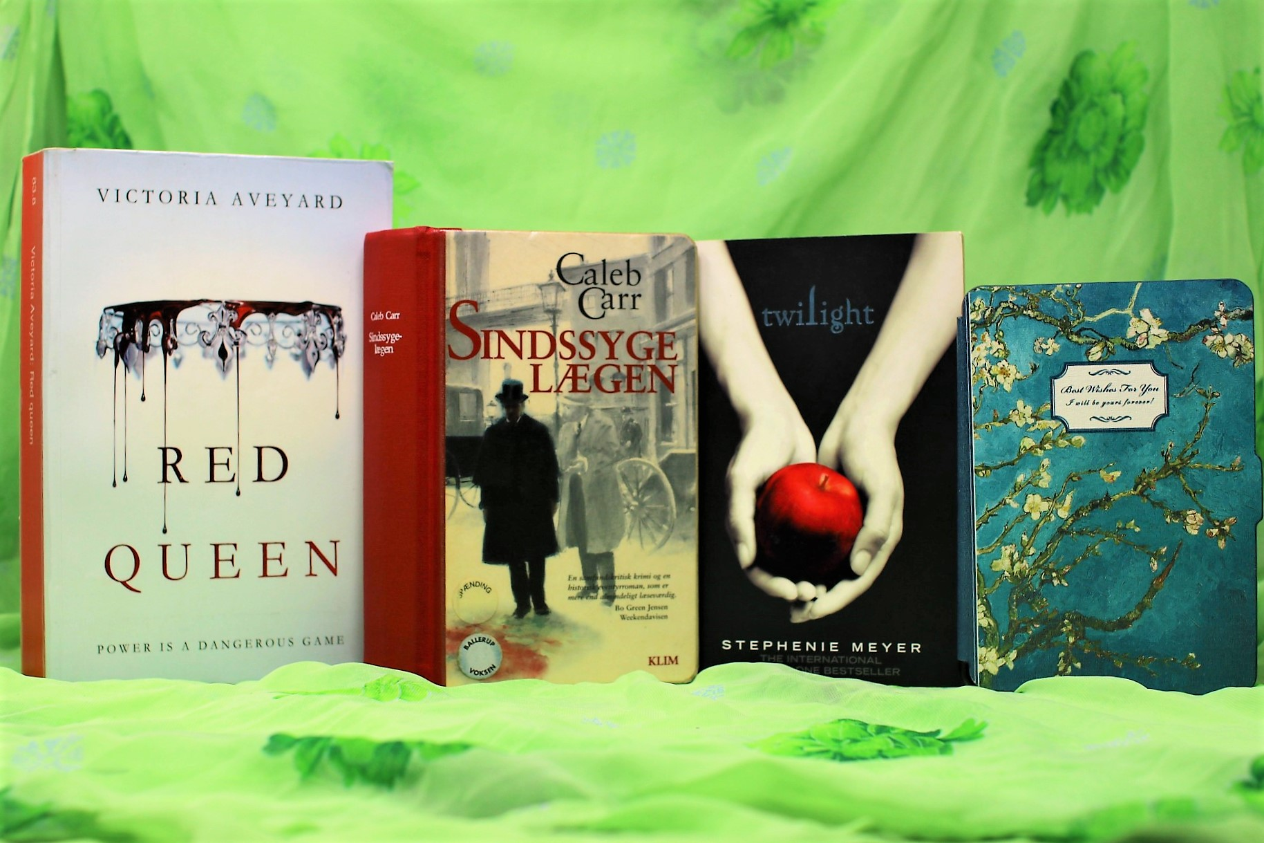 My February TBR consists of: Red Queen, The Alienist, Twilight, and on my Kindle: A Wild and Unremarkable Thing and Wildwood